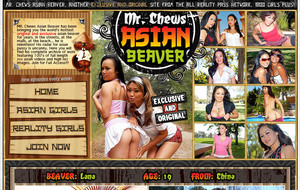 Mr. Chew`s Asian Beaver