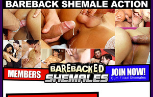 barebacked-shemales