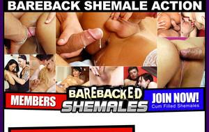 barebacked-shemales