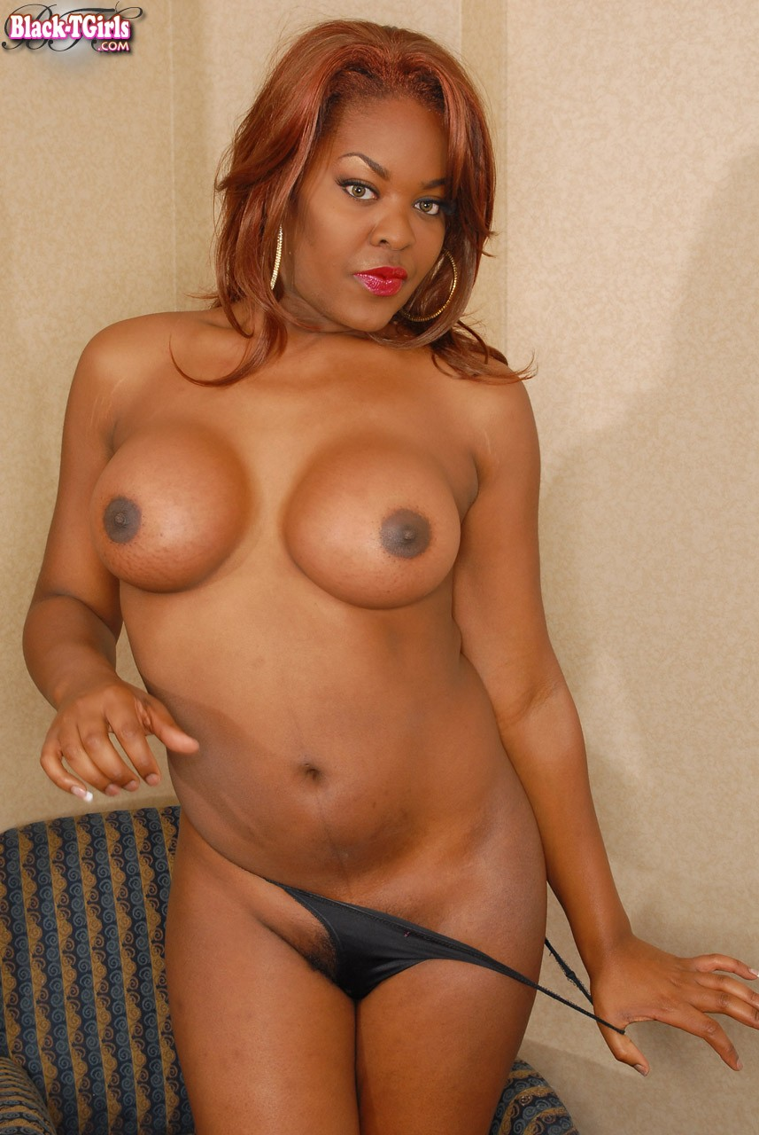black tgirls with big tits - Curvy dark skinned shemale shows her sexy big tits, juicy ass and heavy cock