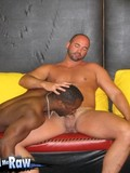 black-muscled-gay-dude-chews-white-cock-then-gets-his-ass-fucked-in-a-rough-manner