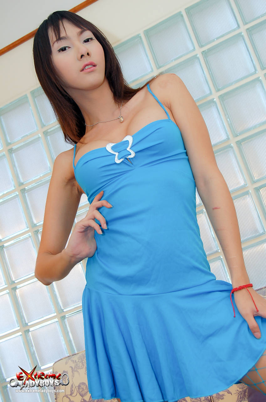 cute ladyboy with pale skin and brunette hair pulls off her blue
