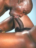 oiled-muscular-black-men-compare-their-gay-cocks-and-give-oral-pleasure-to-each-other