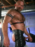 Hairy experienced gay man dressed in leather shows his cock, anus and torso