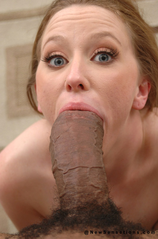 image Hottie gives this dude a mean blowjob