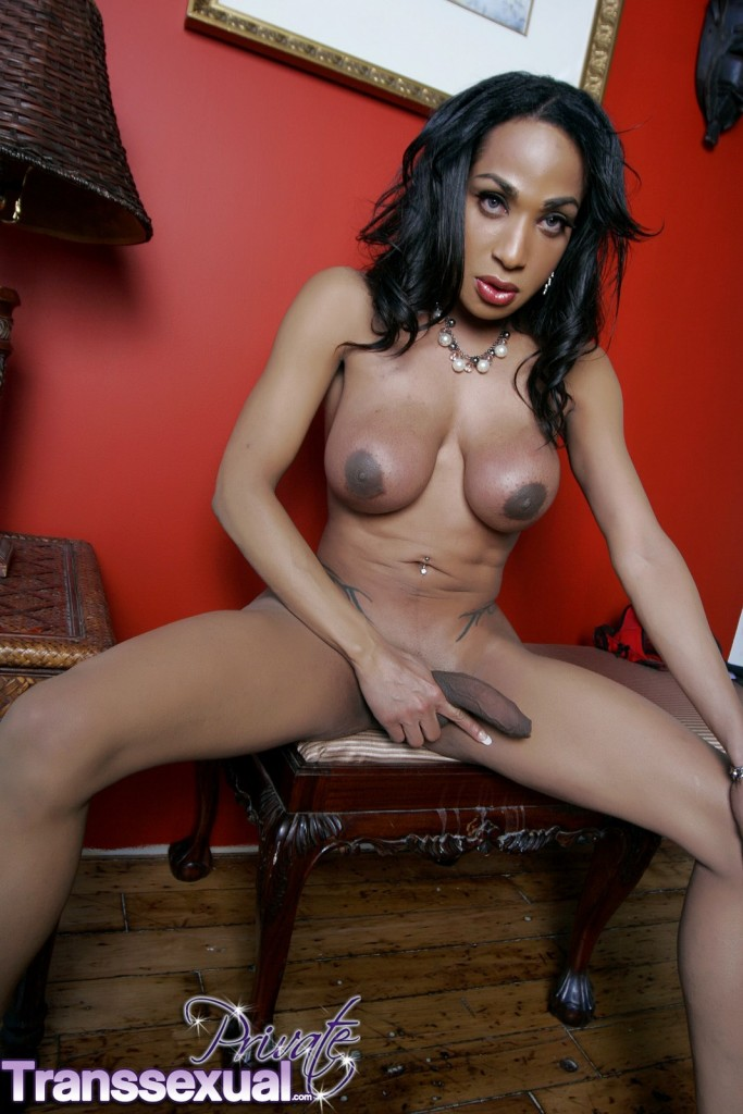 well hung shemale pics № 76298