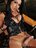 sexy-transsexual-mistress-dressed-in-black-decides-to-show-her-juicy-sausage