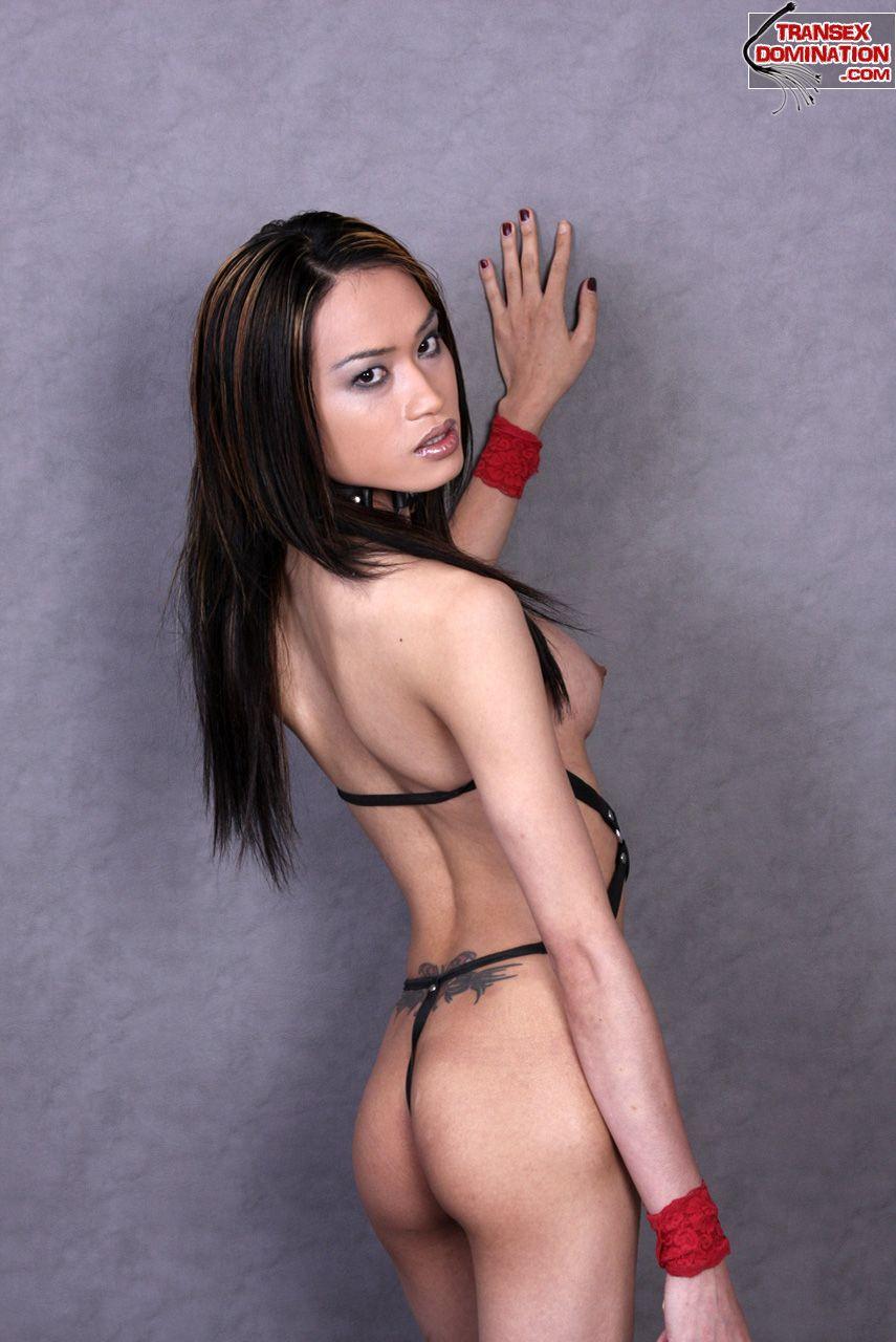 Skinny flat chested ladyboys-9138