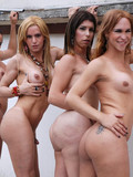 four-sexy-trannies-all-with-adorable-bodies-suck-and-fuck-with-passion
